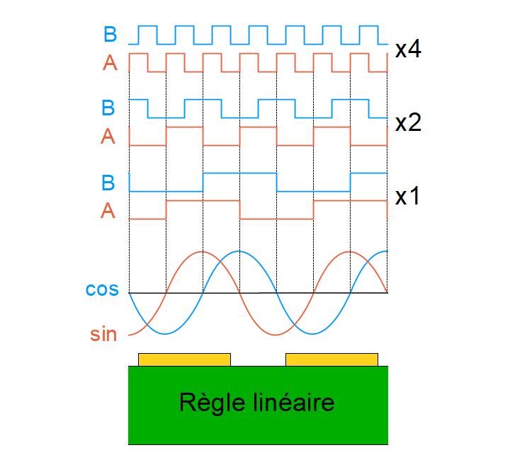 Interpolation des signaux sinus et cosinus